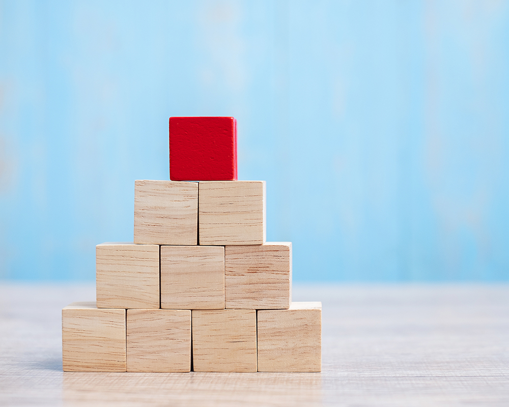 Organization Restructuring & Process Automation Fuels Business Growth & Expansion